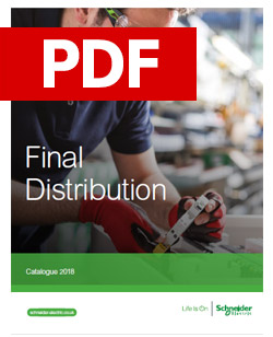 Schneider - Final Distribution - PDF